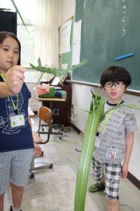 関谷0707小学生が森の役割学習IMG_9837.jpg-1