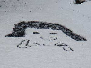 十日町 笑味ちゃんの雪中アート