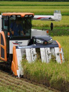 ひすい 西川原生産組合の業務用米稲刈り