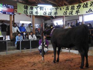 中川0402高千子牛市場02