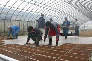 新潟市 新入職員が水稲播種作業
