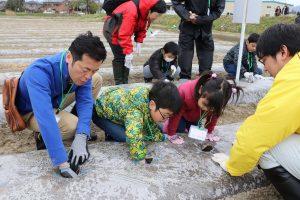 新潟みらい 親子あぐりスクール里芋種芋植え